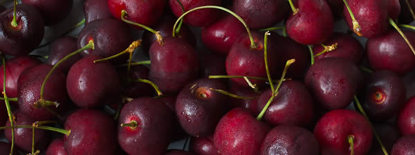 Healthy fresh cherries 