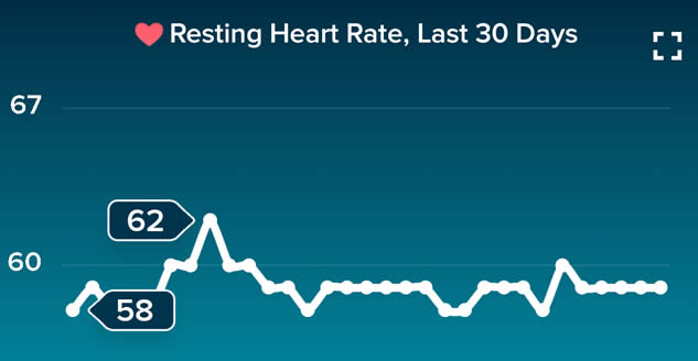 heart rate at rest fitbit